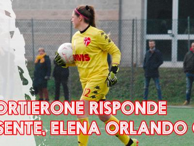 Elena Orlando - Articolo