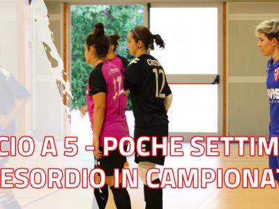 Calcio a 5 - Preparazione nel clou a poche settimane dall'esordio in campionato