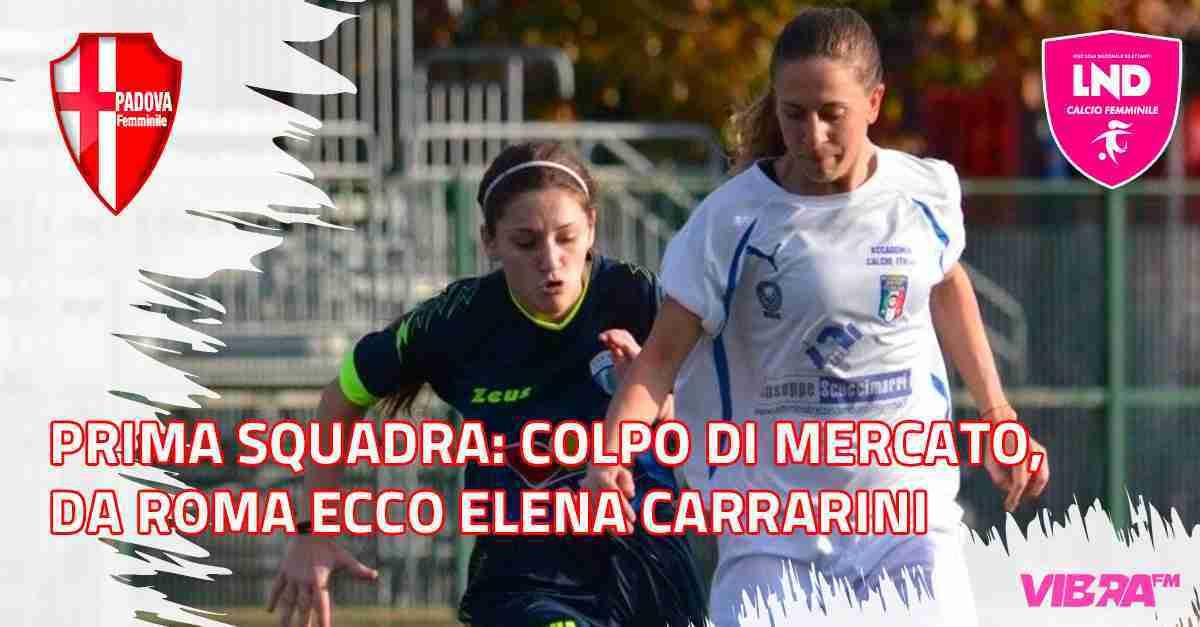Articolo - Elena Carrarini